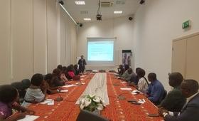 Parceiros do UNFPA participando na formação do PSEA